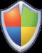 Security shield windows